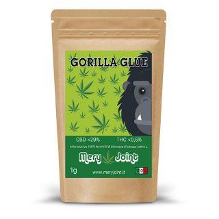 oriz_gorilla-glue_MJ